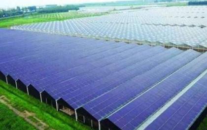 大唐宝鸡麟游贾王塬33.5MW农光互补光伏发电项目