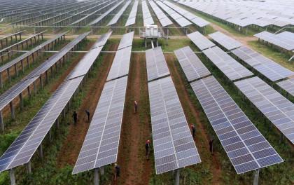 清远:建设两个农光互补光伏发电站 项目总投资6亿