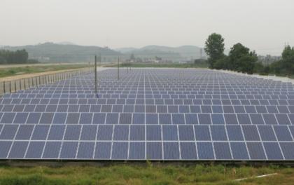 黑龙江安达盐碱地上建起500MW光伏电站